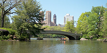 A view of rowboats in Central Park guring our Get, Set, Go! team building activity in New York City